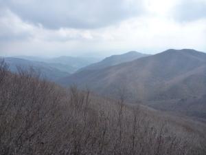 View from Jaggunbong