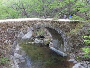 Seunseongyo from upstream