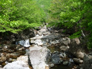 It was a relatively small creek,but the rocks made it very intriguing.