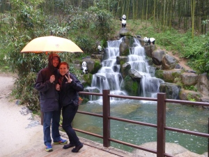 Photo-bombed by miniature geographically confused pandas.