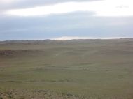 The steppe rolled away with barely any interruptions.