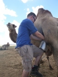 Blake trying camel milking (truth be told, he was much better at it).