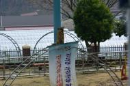 Jindo Sea Parting Festival 076