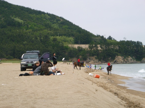 During the painting sessions the Pohang horse club was out running their horses up and down the beach. Kinda interesting to watch.