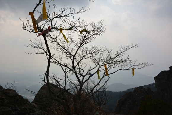 The colourful hiking club ribbons are a uniquely Korean hiking feature.