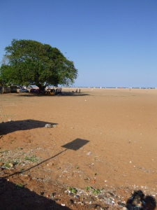 Chennai's beach/trash dump.