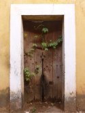 We love old doors. Panaji was full of them.