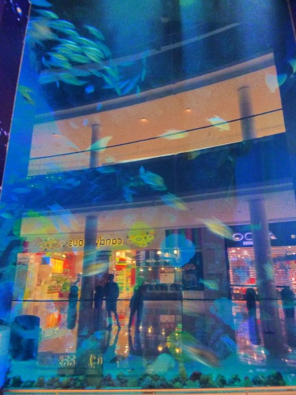 Part of the aquarium inside the Dubai Mall.